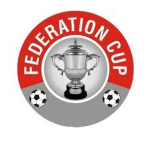 Federation cup football 2011