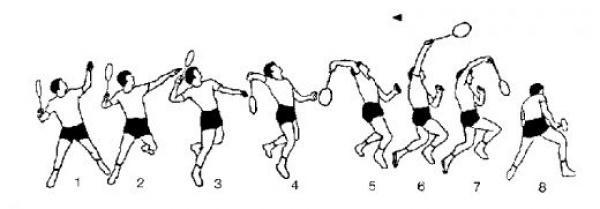 Badminton basics, tips and techniques